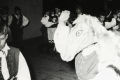 1961 siwy koń