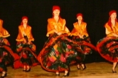1995 DziEs cygańskie