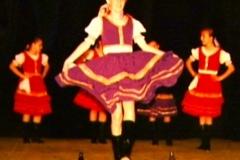 1995 DziEs słowackie