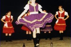 1995 słowackie