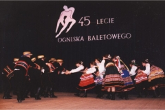 1995 X 21 lubelskie